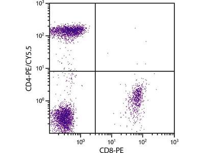 anti-CD4 Molecule (CD4) antibody