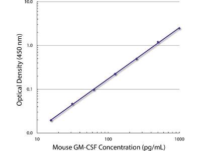 anti-CSF2 (GM-CSF) antibody