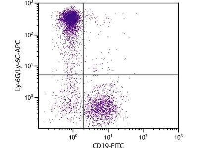 anti-Lymphocyte Antigen 6 Complex, Locus G (Ly6g) antibody (PE-Cy5.5)