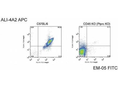 anti-CD45 (PTPRC) antibody