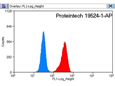 TICAM2 Polyclonal Antibody