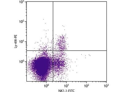 anti-LY-49I (LY-49I) antibody