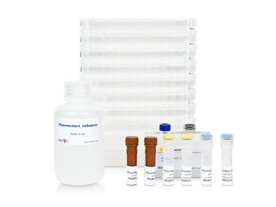 Human IgG/IgA FluoroSpot kit