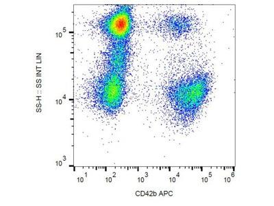 CD42b / GPIb alpha Antibody (HIP1)