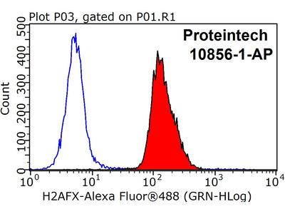 Histone H2A.X antibody