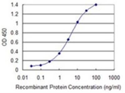 PCDHGB2 Antibody (6E9)