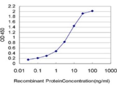 THUMPD1 Antibody (4A11)
