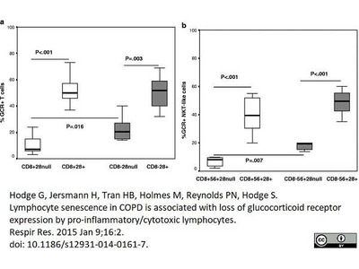 MOUSE ANTI HUMAN GLUCOCORTICOID RECEPTOR