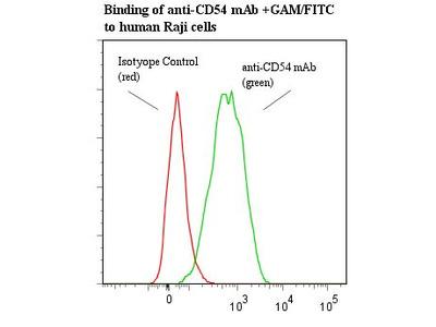 ICAM-1 / CD54 Monoclonal Antibody