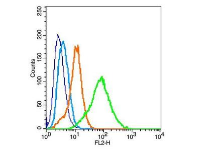 EpCAM/CD326 Antibody