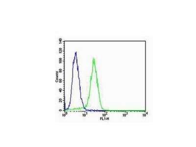 CK18 Antibody