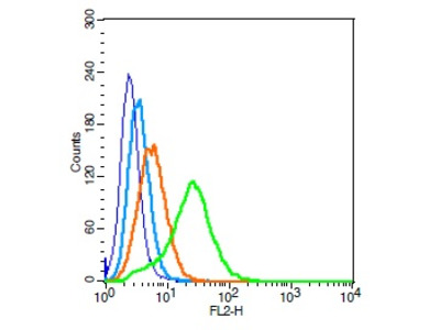 PAFR Antibody