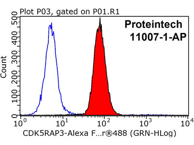 CDK5RAP3 antibody