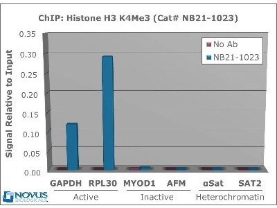 Chromata ChIP Histone H3 [ac Lys4] ChIP Kit