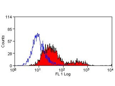 P2rx7 Antibody - FITC Conjugated (OASA05734)