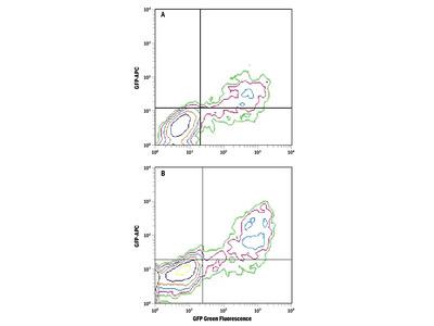 GFP APC-conjugated Antibody