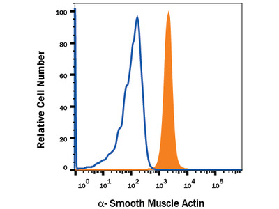 alpha-Smooth Muscle Actin APC-conjugated Antibody