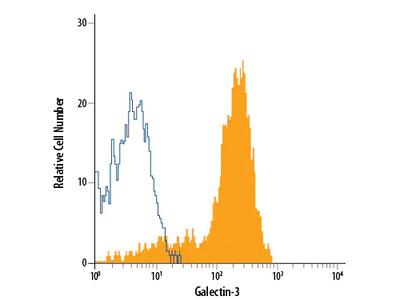 Galectin-3 APC-conjugated Antibody