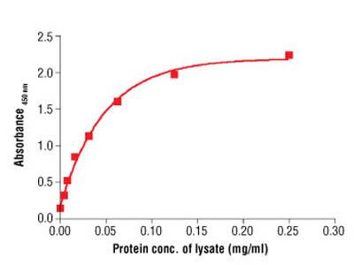 PathScan ® Total β-Actin Sandwich ELISA Antibody Pair