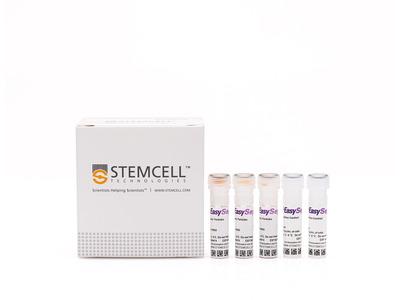 EasySep™ Human CD4+CD127lowCD49d- Regulatory T Cell Enrichment Kit
