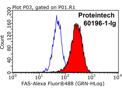 FAS/CD95 antibody