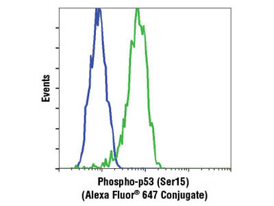 Phospho-p53 (Ser15) (16G8) Mouse mAb (Alexa Fluor ® 647 Conjugate)