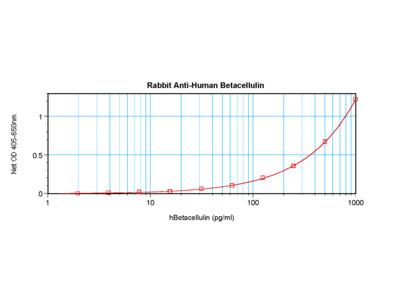 Betacellulin Antibody