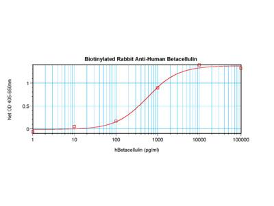 Betacellulin Antibody (biotin)