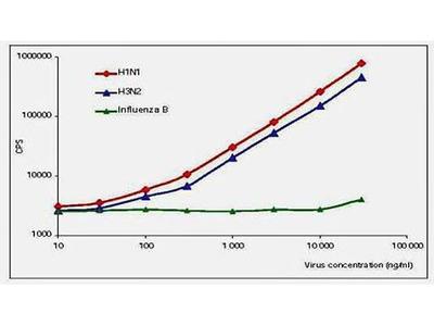 Influenza A (NP) antibody