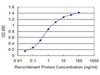 IL1RN Monoclonal Antibody