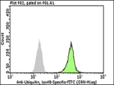 Milli-Mark™ Anti-Ubiquitin, Lys48-Specific-FITC, clone Apu2