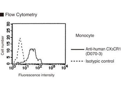 Anti-CX3CR1 (Human) mAb