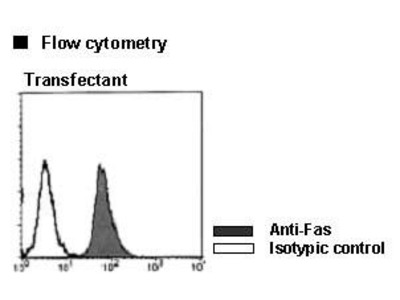 Anti-Fas (CD95) (Human) mAb
