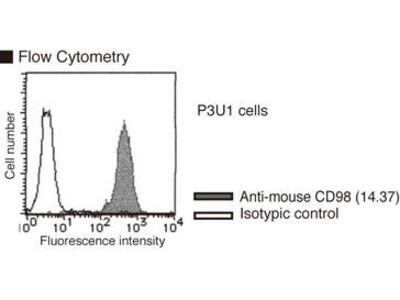 Anti-CD98 (Mouse) mAb