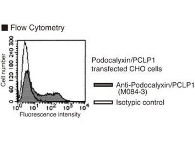 Anti-Podocalyxin (PCLP1) (Human) mAb