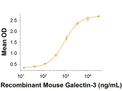 Siglec-E Fc Chimera Protein