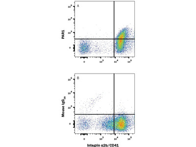 PAR1 APC-conjugated Antibody