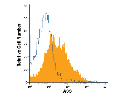 A33 APC-conjugated Antibody