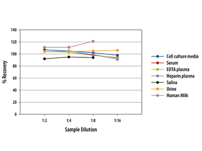 Human CD40 Quantikine ELISA Kit