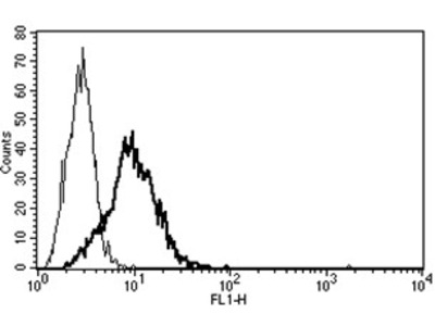 anti Neurotensin receptor 1