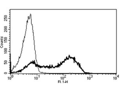 CD45 (PTPRC) (CD45RA) mouse monoclonal antibody, clone B-C15, FITC