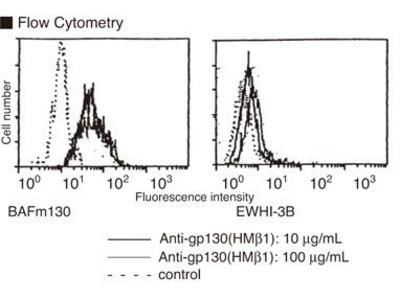 Anti-CD130 (gp130/IL-6Rbeta) (Mouse) mAb