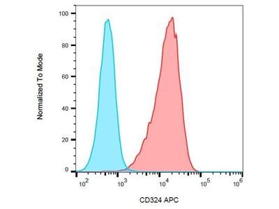 CD324 antibody