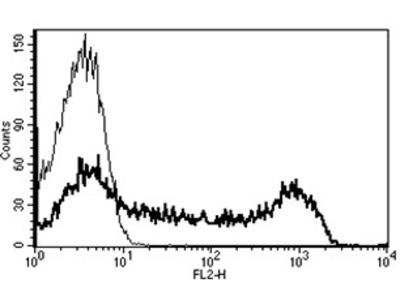 CD45 (PTPRC) (CD45RA) mouse monoclonal antibody, clone B-C15, PE
