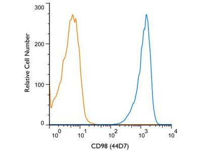 CD98 Antibody (44D7)