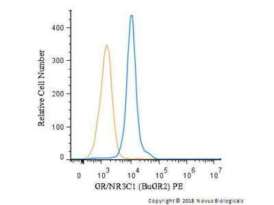 GR /NR3C1 Antibody (BuGR2)