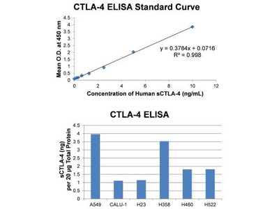 Human CTLA-4 ELISA Kit (Colorimetric)