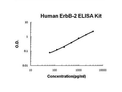 Human ErbB-2 ELISA kit