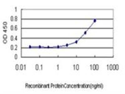 Gremlin 1 Antibody (4C2)