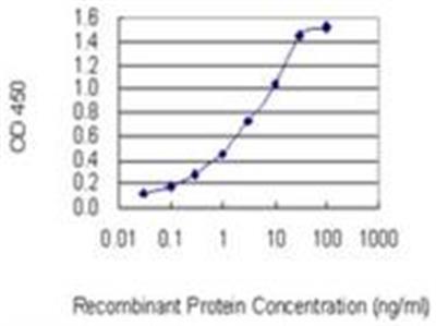 P4HA3 Antibody (7F10)